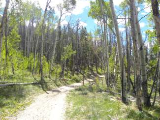 The Oro Grande trail is a good option for early season hiking and biking in Summit County, with a fun and fast mix of double-track and singletrack.
