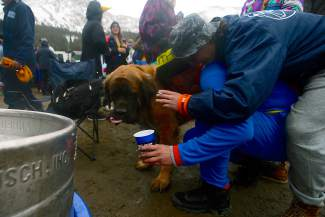 Partiers at Gaper Day at Arapahoe Basin Ski Area on Wednesday, April 1, 2015, share some affection with a dog named Apa.