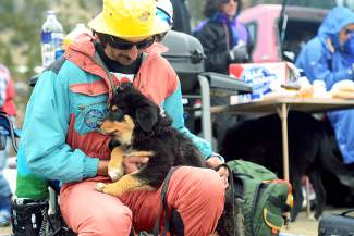 Pat Childs, 24, of Silverthorne, brought his 3-month-old Australian shepherd puppy, Penny, to Gaper Day at Arapahoe Basin Ski Area on Wednesday, April 1, 2015.