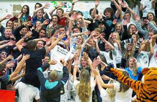 The crowd gets into the action at the Tigers homecoming volleyball game against Steamboat Springs on Oct. 1. The Tigers lost 1-3 to go 2-4 in 4A league play this season.