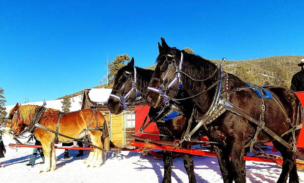 Melissa Baumann sent this photo from the Keystone Stables sleigh ride.