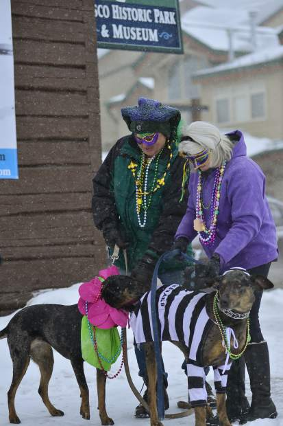 Mark and Mignon Gastman brought Big Jack in the jaildog outfit and Little Brandy out for the fourth annual Mardi Gras 4Paws pet parade Saturday in Frisco.