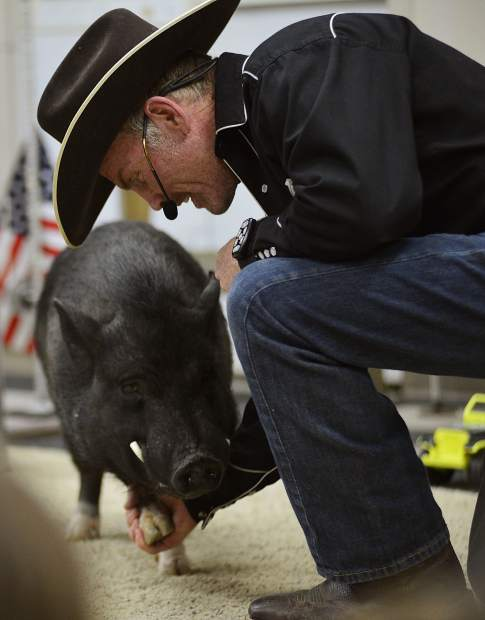 Digger shakes hooves with trainer John Vincent on Wednesday at the Summit County Library's Main Library in Frisco.