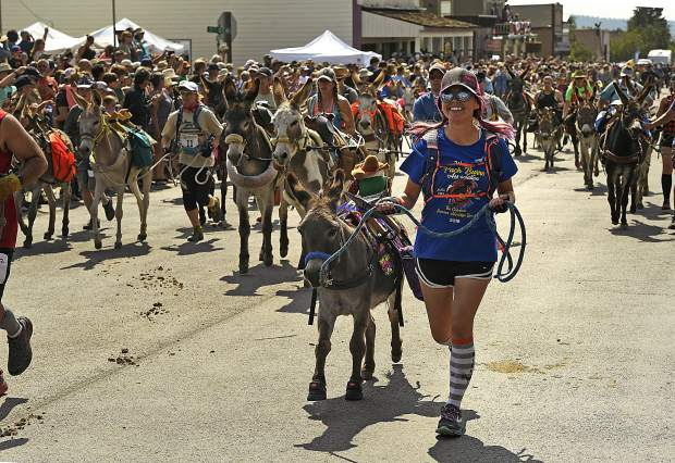Racers and their donkeys take off up Front Street as they begin the 70th annual World Championship Pack Burro Race on Sunday in Fairplay, Colorado. The event was made up of two races. The first is a 15-mile race and the second is 29 miles that goes up to the top of Mosquito Pass which tops out at an elevation of 13,185 ft. This race is the first in the annual Triple Crown of burro racing in Colorado. The second leg runs in Leadville, August 5th and the third leg is in Buena Vista, August 13.