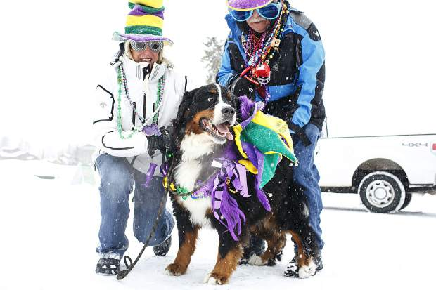 Scenes from the Mardi Gras 4Paws Parade Saturday, Feb. 10, along Main Street in Frisco.