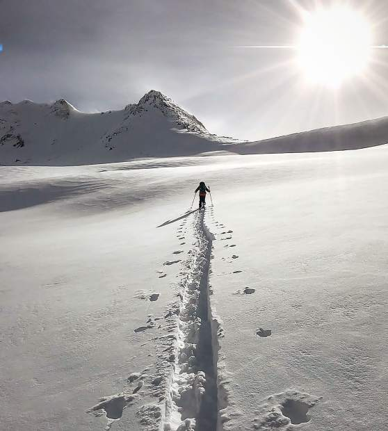 A splitboarder hikes in the fresh snow.