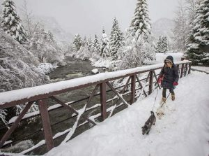 Photo essay: 'Mayuary' continues with a foot of snow in Summit over the past week