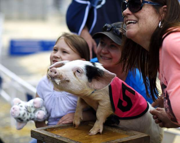 An All-Alaskan Racing Pig poses for a photo with fans following a race during the 26th Annual Frisco BBQ Challenge Saturday June 15, on Main Street in Frisco.