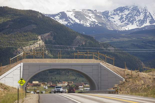 Summit County considers endorsing wildlife safe passages plan for future planning, development decisions