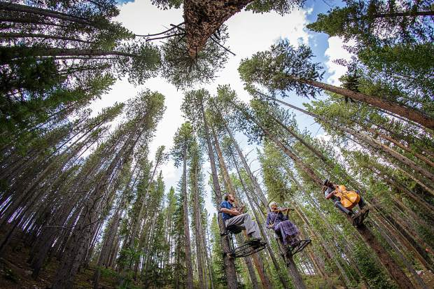 Elevating music to new heights, Tree-o features three musicians — cellist Russick Smith, violinist Karen Lauffer and mandolinist Kevin Larkin — in a series of free concerts held in the forest, high among the pine boughs and branches.